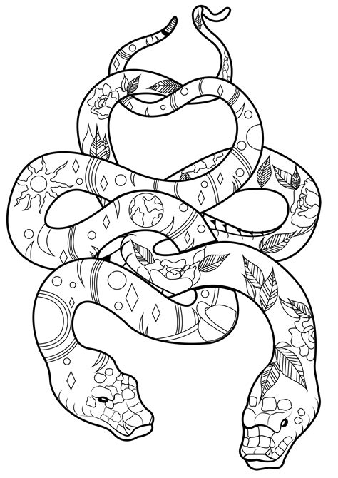 cool snakes coloring pages coloring home