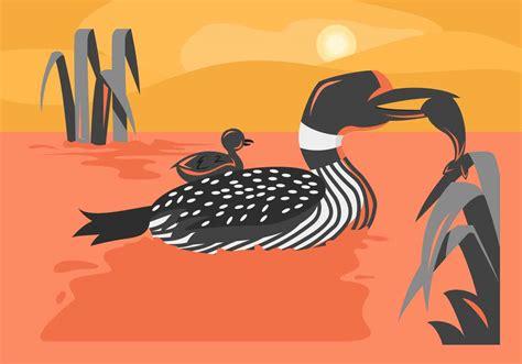 unique loon bird vectors   vector art