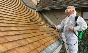 Anti Mousse Et Hydrofuge 2 En 1 : impermeabilisant toiture pour tuile conseils et vente d 39 hydrofuge toiture blog conseils cera roc ~ Melissatoandfro.com Idées de Décoration