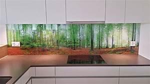 Küchenrückwand Glas Foto : k chenr ckwand aus glas mit aufgedrucktem panoramafoto ~ Michelbontemps.com Haus und Dekorationen