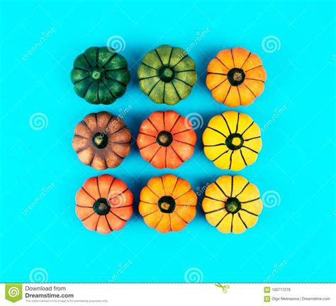 Fall Backgrounds Trendy by Decorative Pumpkins On Trendy Blue Background Stock Photo