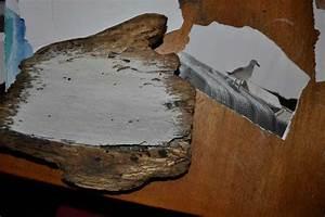 Holz Wachsen Anleitung : treibholzeffekt wie du fotos auf holz drucken kannst treibholzeffekt ~ A.2002-acura-tl-radio.info Haus und Dekorationen