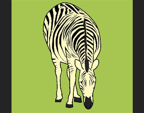Colored Page Zebra Painted By Ania