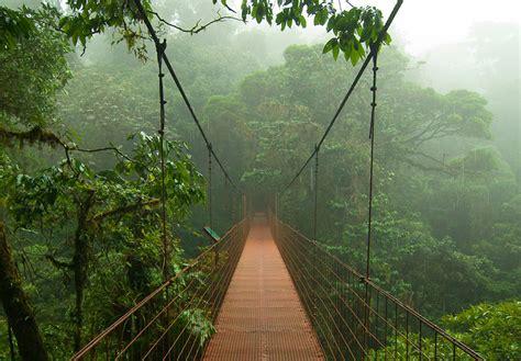 10 Of The World's Wildest Rainforests & Jungles To Trek
