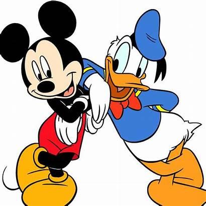 Duck Donald Micky Maus Ist Als Beliebter