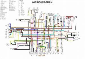 2006 Yfz 450 Wiring Diagram