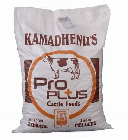Feeds Animal Cattle Kamadhenu Erode Ask