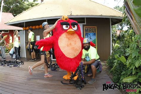 I Explored Bird Island With The Angry Birds