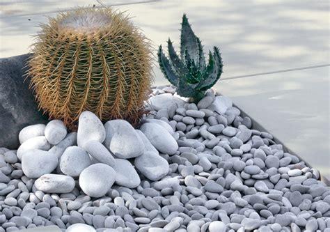 d 233 coration jardin avec galets