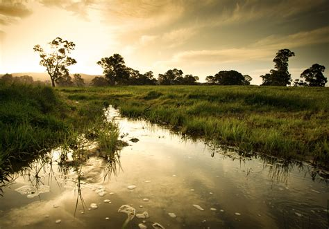 World Wetlands Day (2nd February)   Days Of The Year