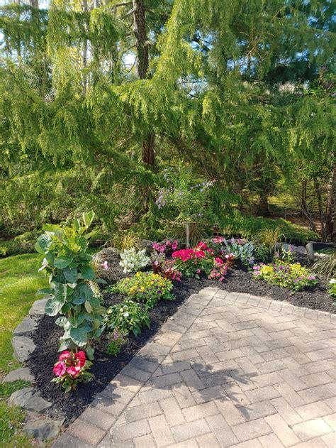 little garden - Hutchison Landscaping