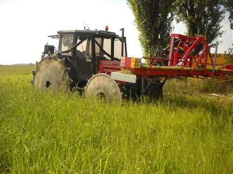 Eliminare le infestanti dal riso biologico Meneguzzo Tecnologie per agricoltura e automazione