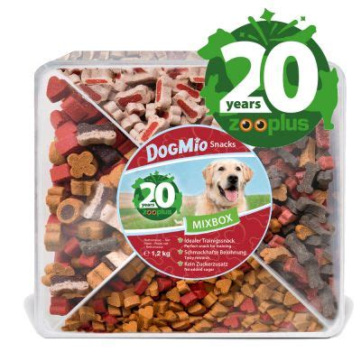 birthday edition dogmio barkis snack box top deals