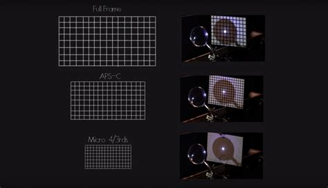 The Smaller the Sensor Size, the Shallower Your Depth of
