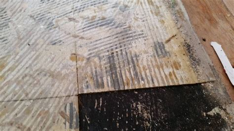 asbestos lino removals awm asbestos meth removers