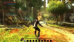 Kingdoms Of Amalur Reckoning Free Download Game Free