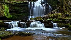 Cascade, Moss, Rock, Waterfall, England, Hd, Nature, Wallpapers