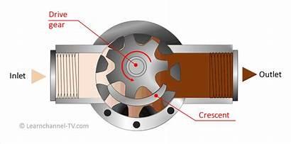 Pump Gear Internal Works Types Pumps Tv