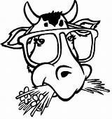 Coloring Cow Printable Bull Animal Face Cows Animals Coloringpages1001 Milk sketch template