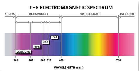 What are ultraviolet lights good for? – Best Light