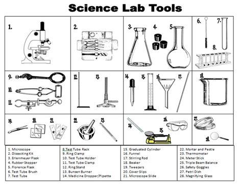 scientific method steps exles worksheet zoey and