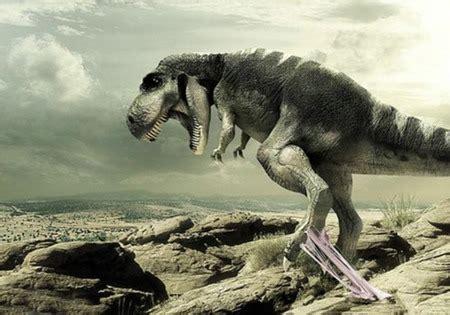 funny dinosaur wallpaper desktop funny animal