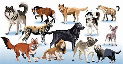 Clipart Dogs Pack Dog Clip Animals Domesticated