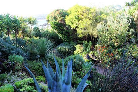 Botanischer Garten Roscoff by Der Exotische Und Botanische Garten Roscoff Photo 3