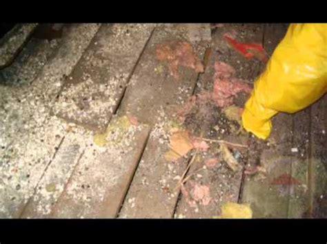 remove asbestos asbestos removal tips irvine ca
