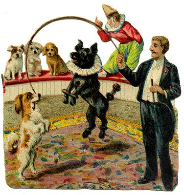 vintage graphic circus dogs  graphics fairy