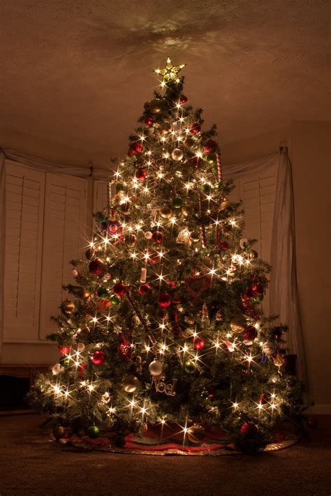 Holiday Traditions for our First Christmas at Home ...
