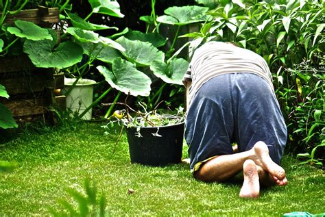 Gartenarbeit  Oberpfalz Nachrichten