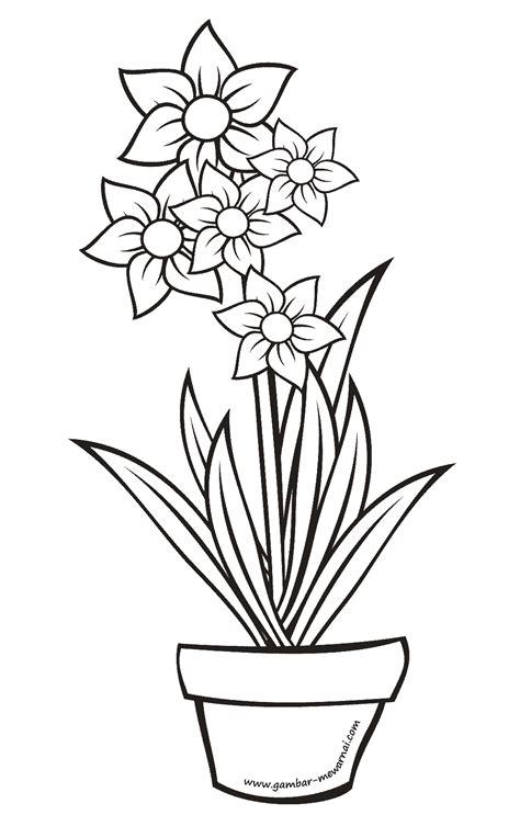 mewarnai bunga pot contoh gambar mewarnai