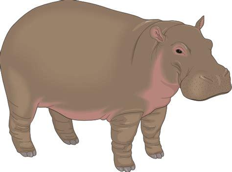 Hippo Clip Hippopotamus 3 Clip At Clker Vector Clip