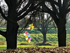Warten Auf Den Frühling : das lange warten auf den fr hling haben wir verk rzt foto bild pflanzen pilze ~ Watch28wear.com Haus und Dekorationen