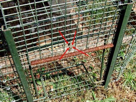 piege a pigeon fait maison 28 images pi 232 ge 224 rat artisanal b a du barciste lutter