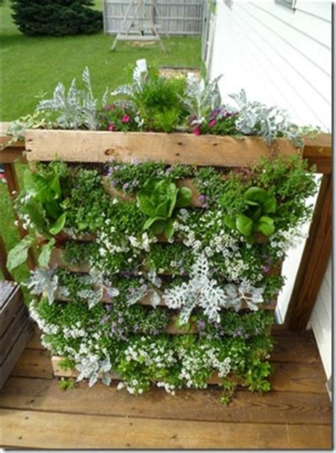 diy pallet herb garden pallets designs