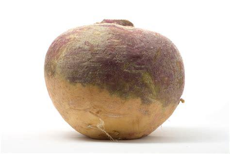 legumes de la famille des potirons rutabaga planter et cultiver ooreka