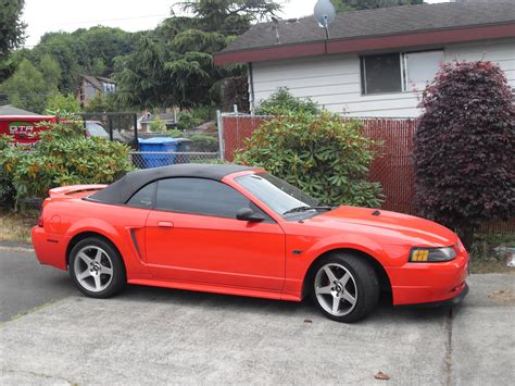 best 2000 ford mustang randaltor 2000 ford mustanggt convertible 2d specs photos