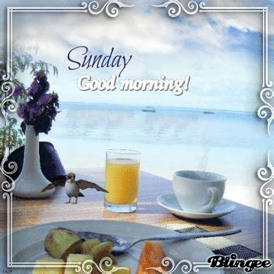 Orange Juice And Coffee Sunday Good Morning Quote Pictures ...