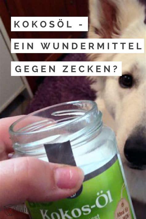 Zeckenschutz Was Hilft Gegen Zecken by Kokos 246 L F 252 R Den Hund Ein Tolles Wundermittel Besonders