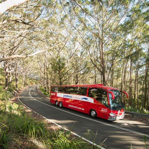 greyhound bus pass hop on hop off melbourne to cairns