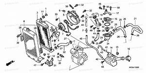 Honda Motorcycle 2007 Oem Parts Diagram For Radiator