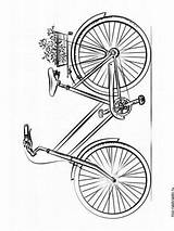 Coloring Bicycle Pages Printable Mycoloring sketch template