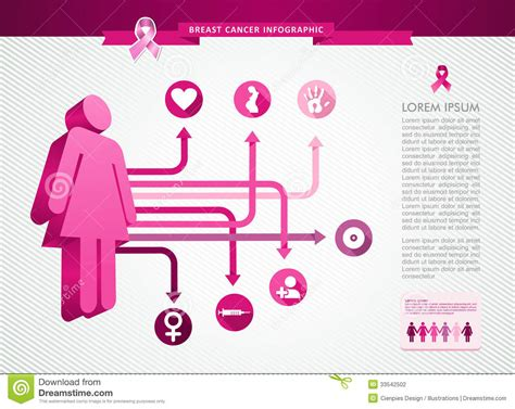Breast Ct Mr Template Set by Breast Cancer Awareness Ribbon Woman Infographics Stock