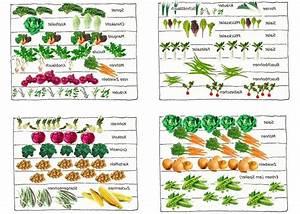 Gemüsegarten Anlegen Für Anfänger : gem segarten anlegen garten pinterest gem segarten anlegen gem segarten und pflanzplan ~ Whattoseeinmadrid.com Haus und Dekorationen