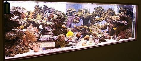 reef aquariums 2 meters aquaroche