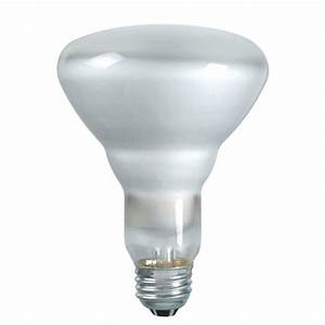 Philips  watt indoor outdoor par dimmable led