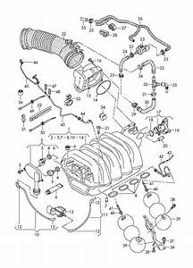 audi a8 fuel pump diagram audi free engine image for With fuel line diagram in addition audi a4 fuel tank diagram also fuel tank