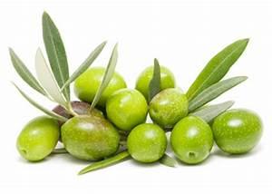 Оливки или маслины от геморроя